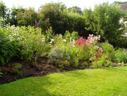 A photo showing a cottage garden planting scheme designed and installed by our fully trained horticulturalists