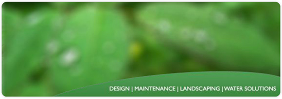Mark Cairns Landscapes & Garden Services