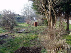 A photo before of neglected garden